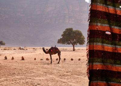 Wadi Rum Jordanien